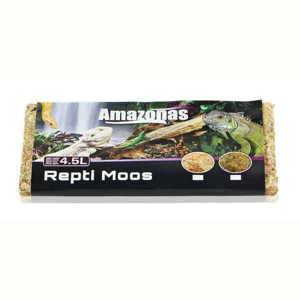 moss regenwaldmoss terrarium