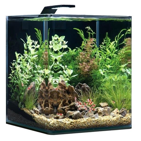nano cube aquarium 30l dennerle 235902