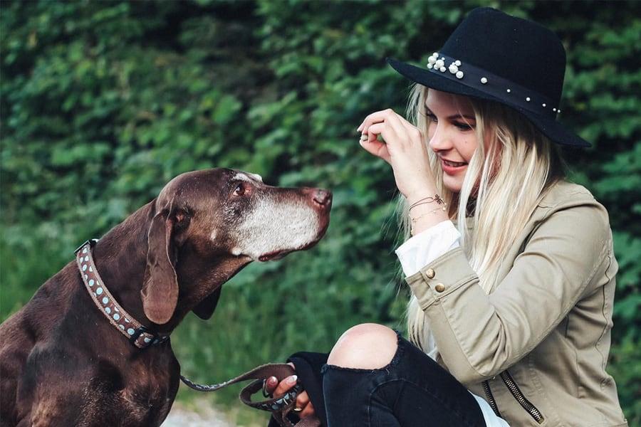 Natürliche Hundesnacks