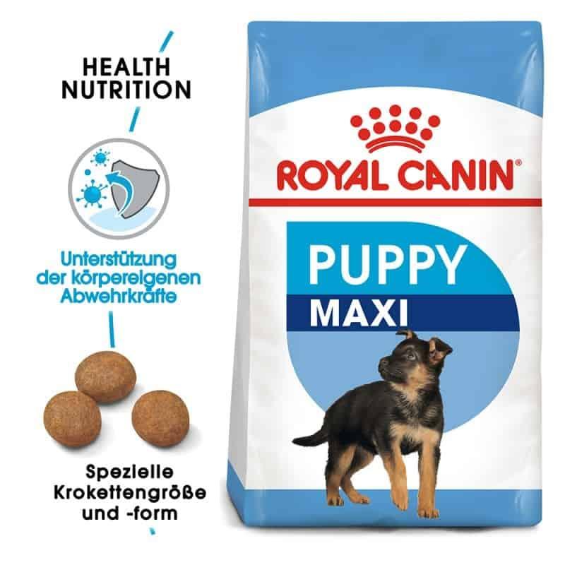 royal canin puppy maxi schwei welpen