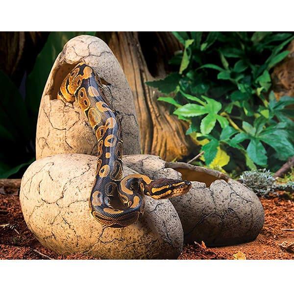 schlangen terrarium versteck