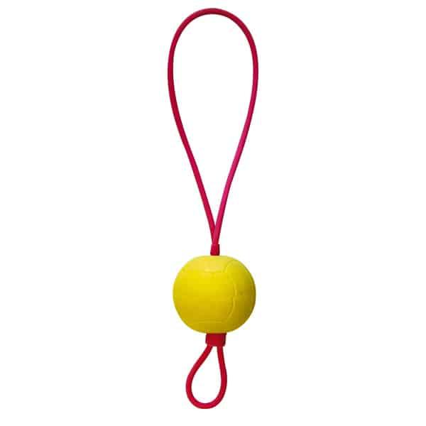schleuderball hunde swisspet ball gummiseil