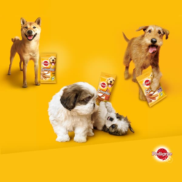 schmackos originals pedigree snacks