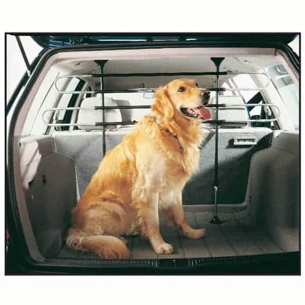 schutzgitter auto hunde highway