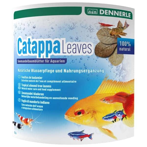 seemandelbaumblaetter dennerle catappa aquarium