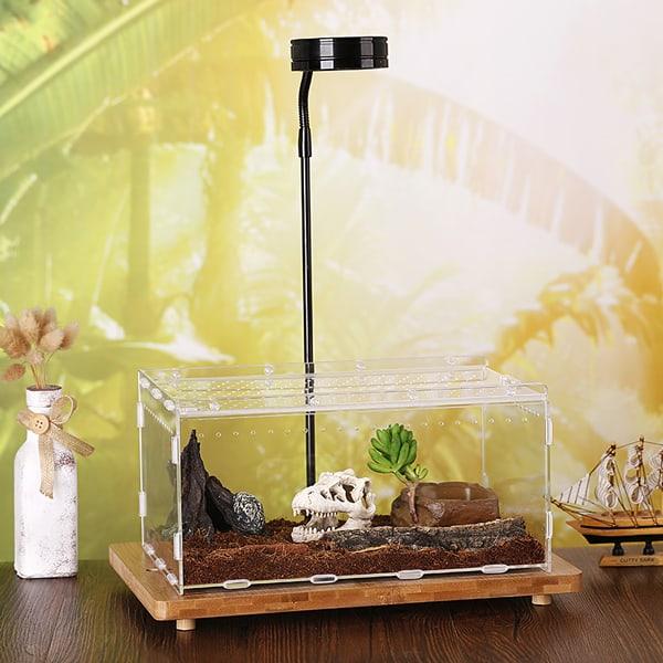 terrarium acryl box ausstellungsbox