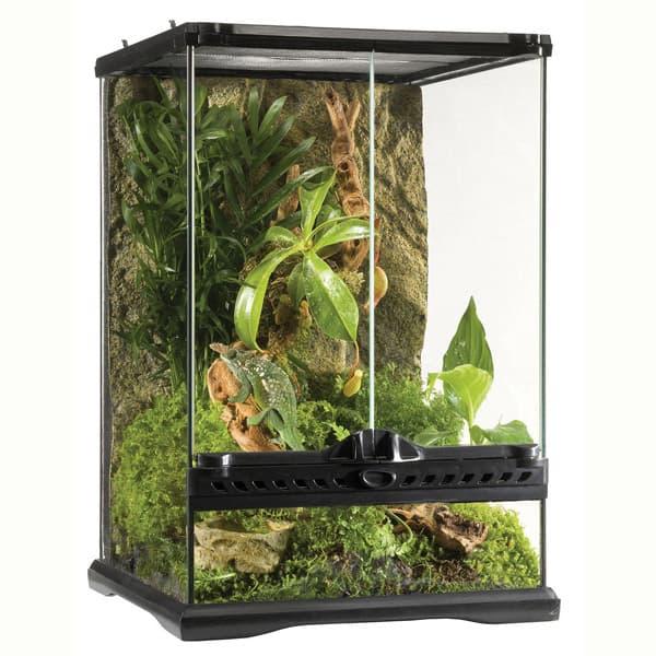 terrarium exo terra mini 30x30x45