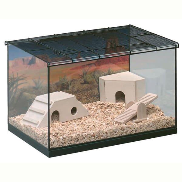 terrarium nager nagarium