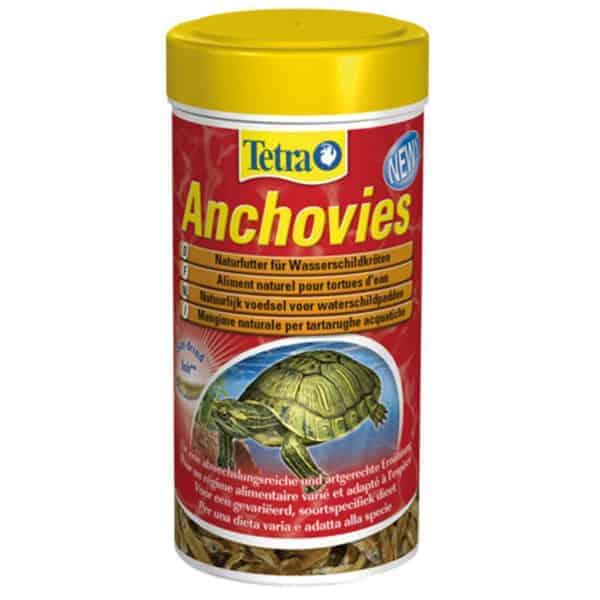 tetra anchovies futter wasserschildkroeten