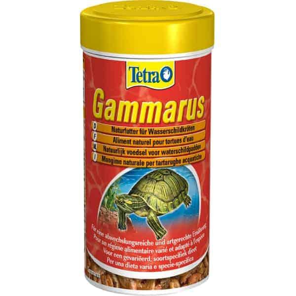tetra gammarus wasserschildkroeten nassfutter garnelen