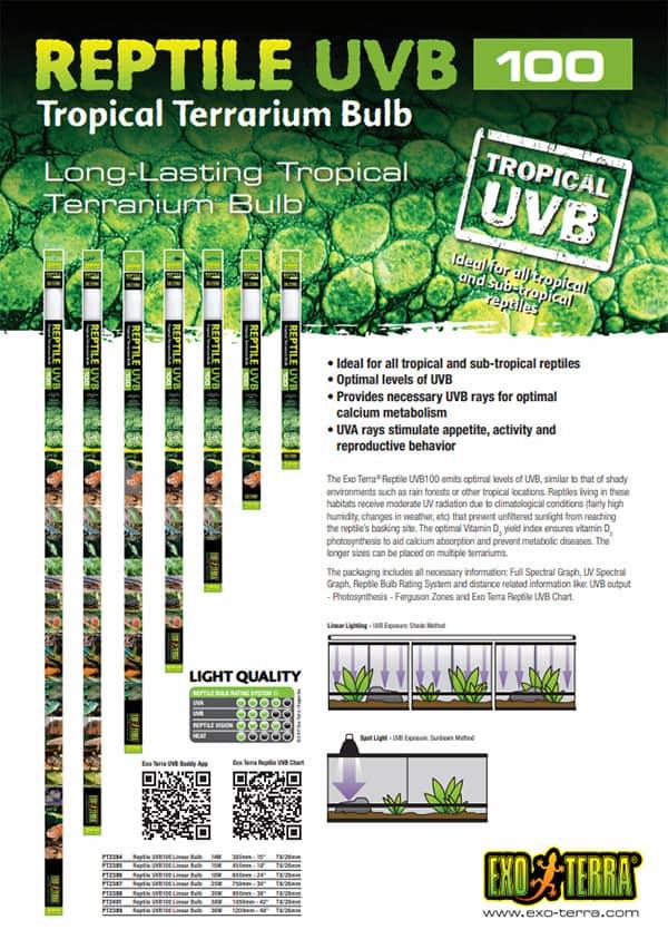 tropical terrarium beleuchtung uvb100