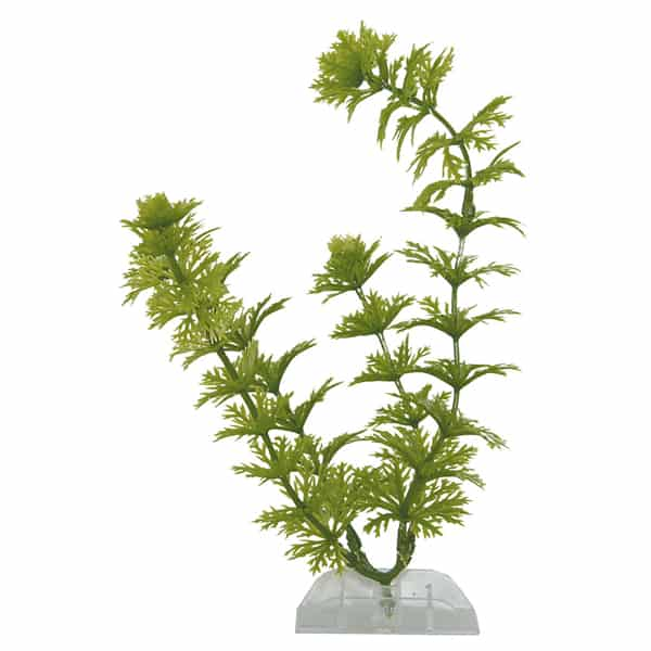 wasserpflanzen tetra deco art plantastics ambuli